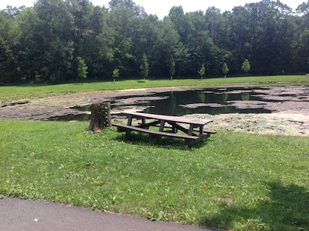 lake picnic table