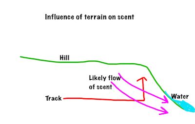 track on hill