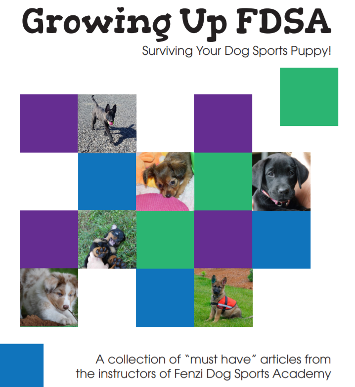 fdsa puppy book cover